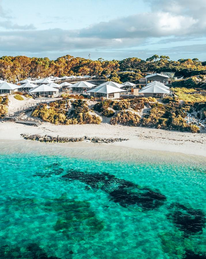 Discovery Rottnest Island - Accommodation QLD
