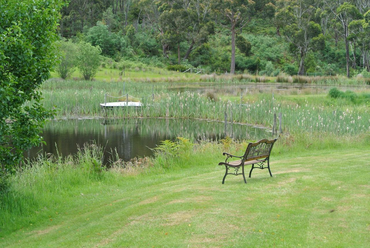 Hamlet Downs Country Accommodation - Accommodation QLD