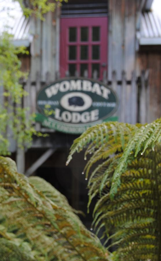 The Wombat Lodge - Accommodation QLD