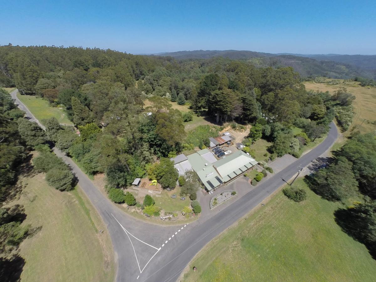 Tarra Bulga Guesthouse - Accommodation QLD