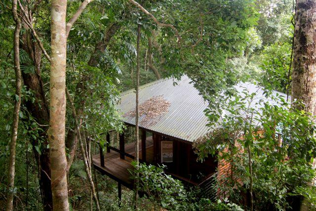 Cairns Reef  Rainforest BB - Accommodation QLD