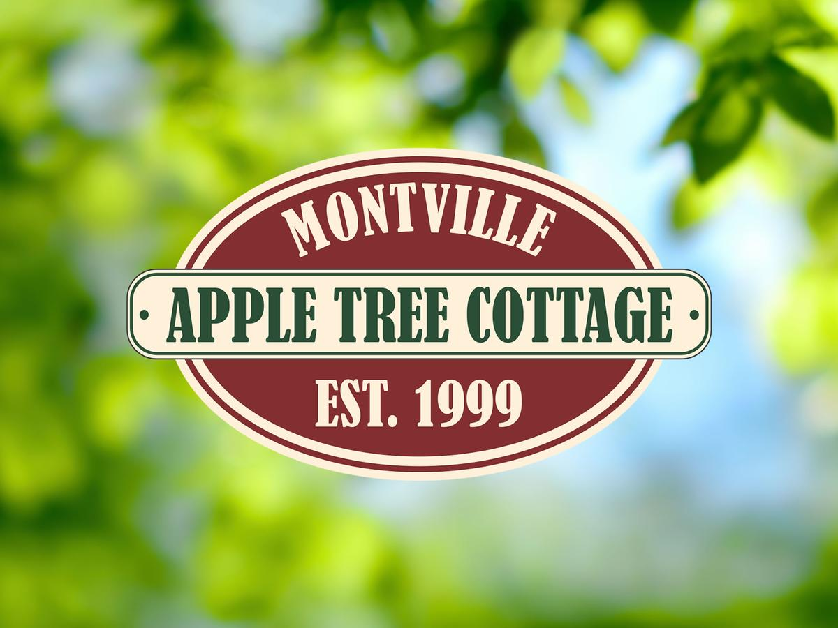 Apple Tree Cottage and Studio - Accommodation QLD